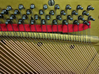 Closeup of new bass strings and tuning pins installed